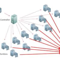 Cách chọn Hosting chống DDOS